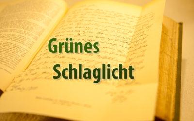 gruenes_schlaglicht