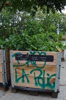 Urban - Gardening AG @ SpontUN | Unna | Nordrhein-Westfalen | Deutschland